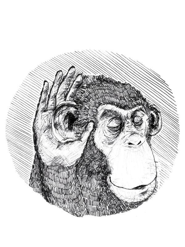 Hor Auf Den Affen Doppelpack Temporare Tattoos Kaufen Im
