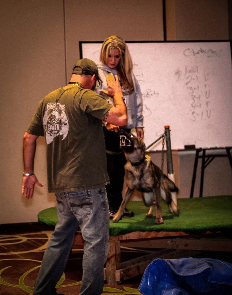 Bitework James Allen Parker World Class Canine Fundamentals Of