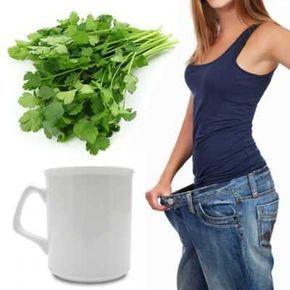 Thé à la coriandre pour perdre du poids en quelques