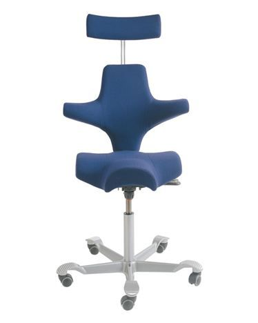Håg Capisco Izzy Office Chair Capisco Chair Ergonomic Chair