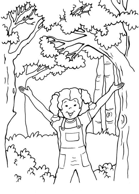 Orman Haftasi Boyama Ormanlar Boyama Sayfalari Boyama Kitaplari