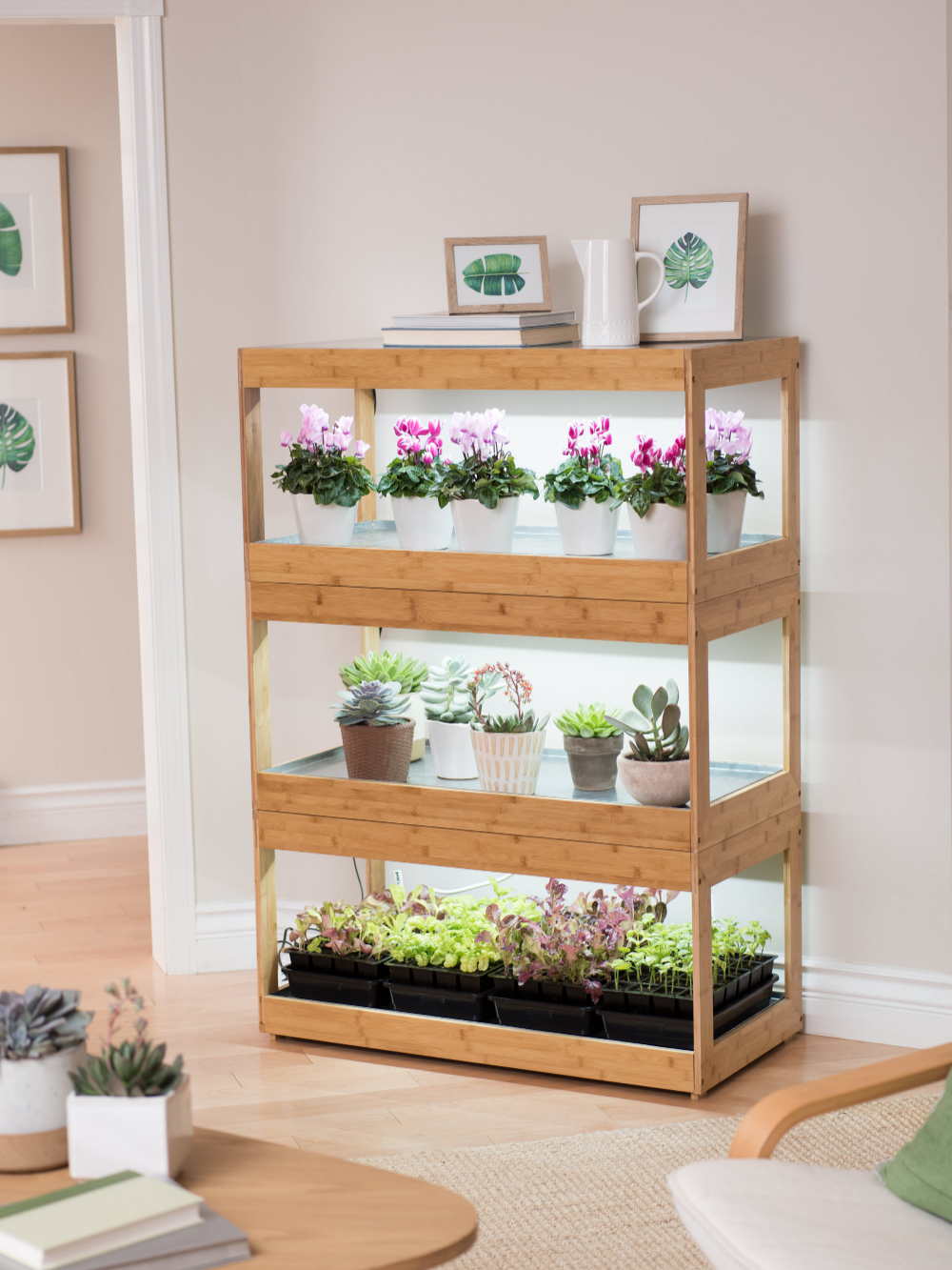 3Tier Bamboo Stand with LED Grow Lights for Succulents