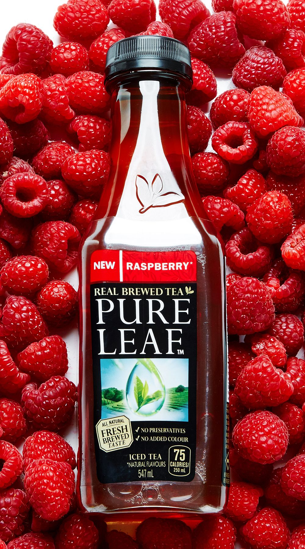 Pin On Bite Me More X Pure Leaf Tea