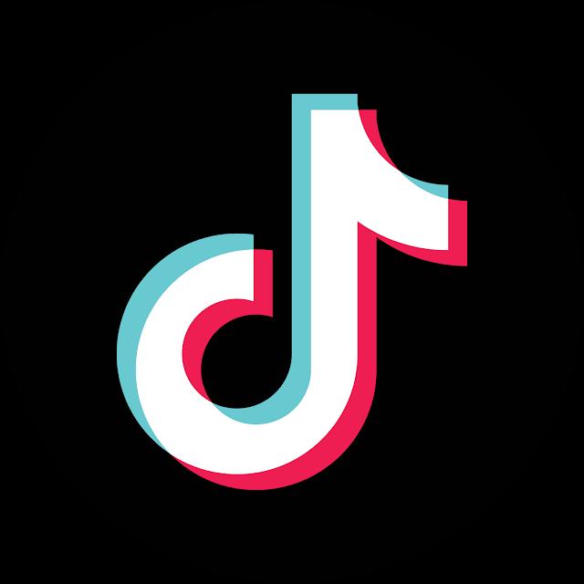 53 Tik Tok Logo创意| Tok, Tik Tok, Logo