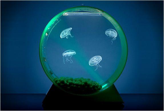 LED Desktop Jellyfish Tank