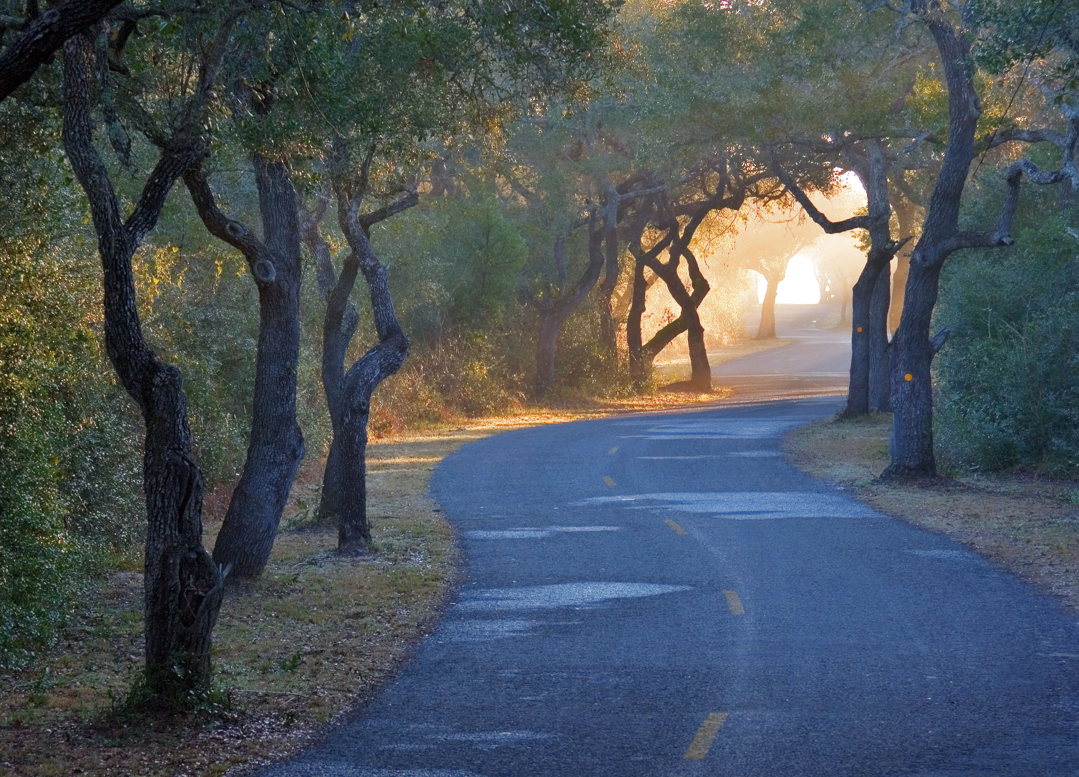 Pin By Lynette Schroeder On Texas It S More Than A State Aransas Pass Port Aransas Texas Vacations To Go