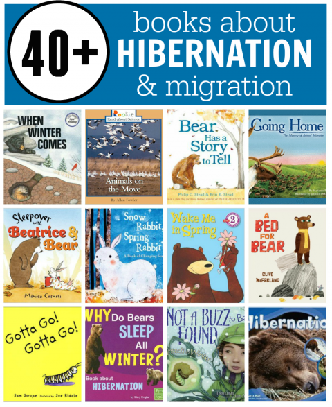 Books about hibernation, migration, and adaptation