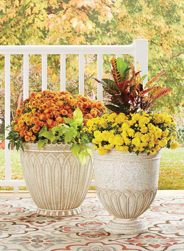 8e1ecb943d37a557c8af1e98b4897b15 - Better Homes And Gardens Flowers Walmart