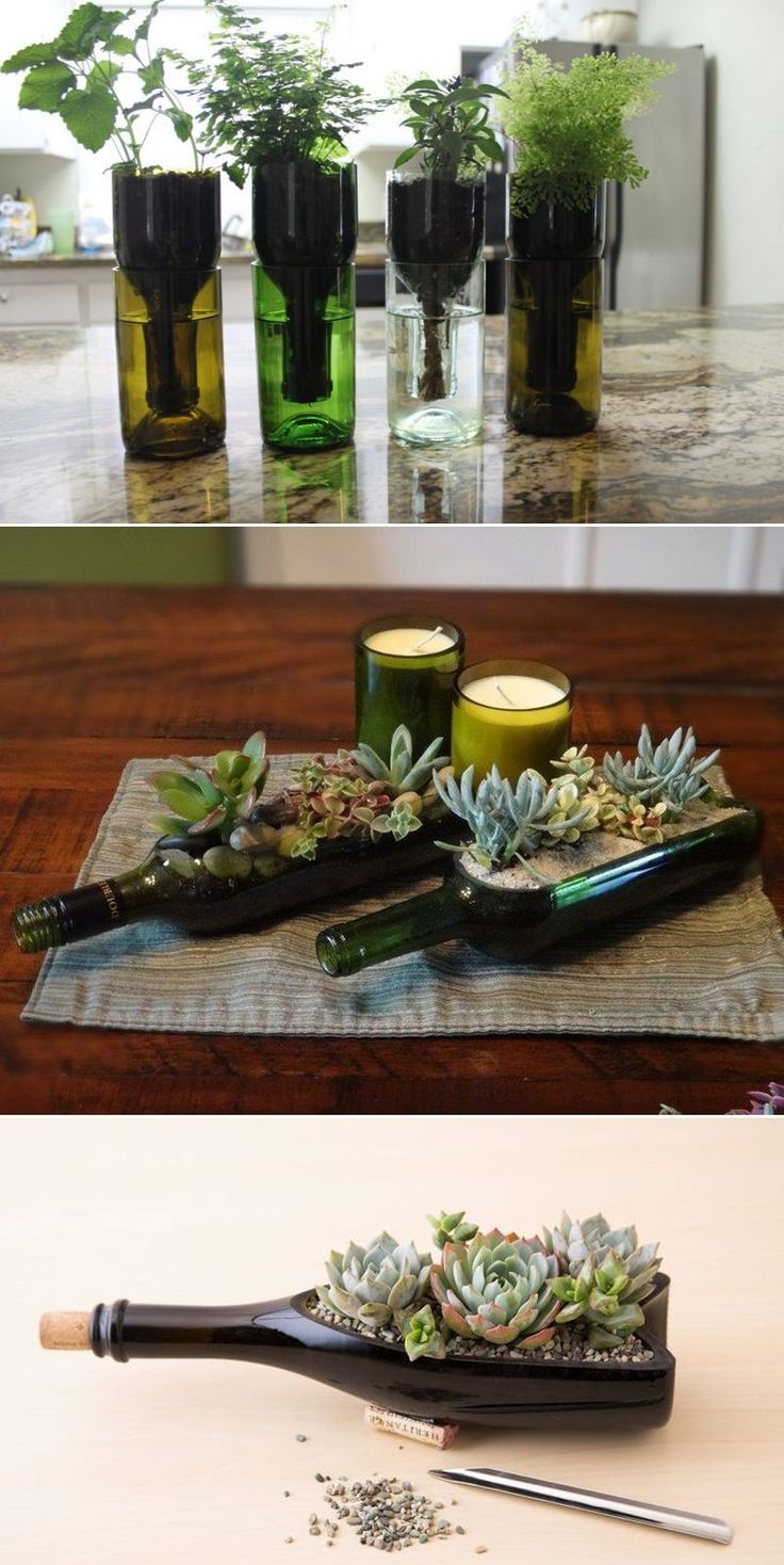 #recyclewinebottles  #winebottleplanter  #DIY  #craft #DIY #self-watering #planter  DIY self-watering planter from old wine bottles #selfwatering