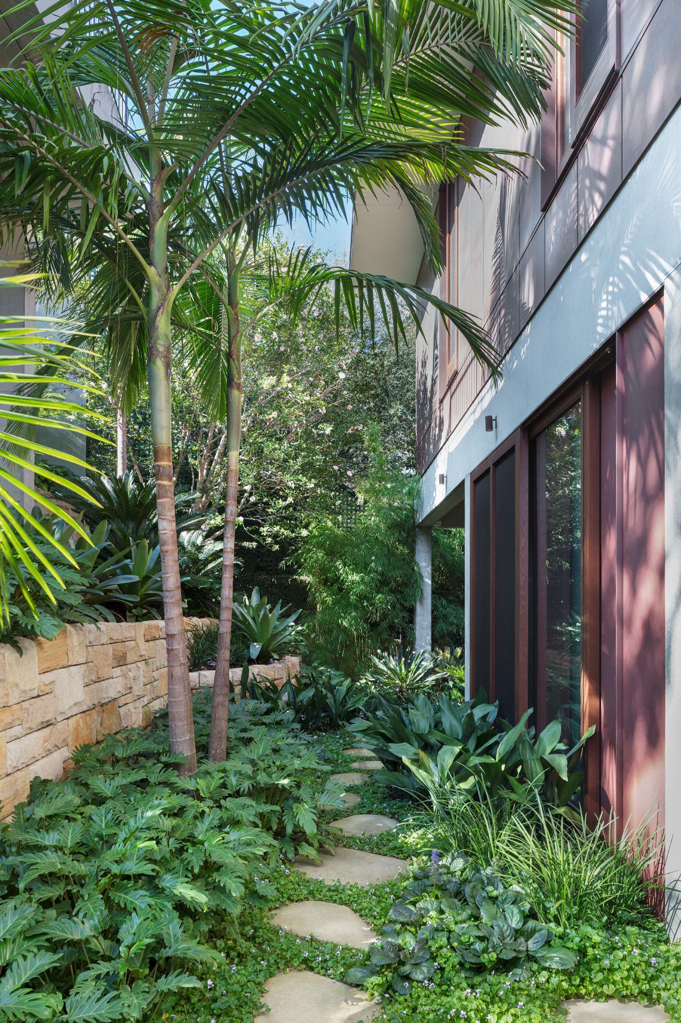 Stone Steppers Create A Journey Through Lush Rainforest Garden In Sydney S Vaucluse Sydney Gardens Garden Landscape Design Landscape Design