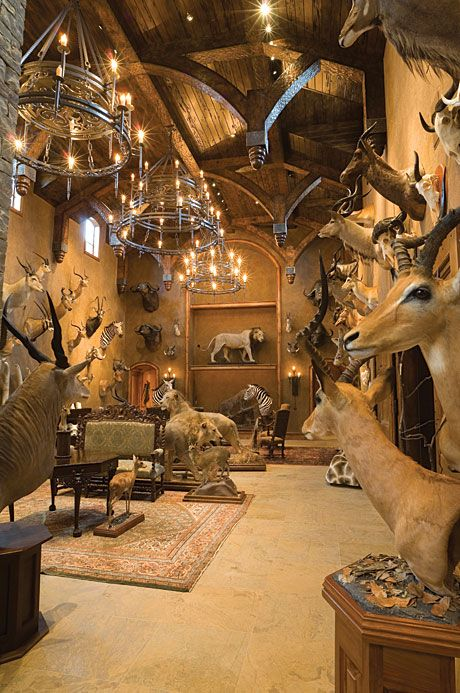 Dream Trophy Room Trophy Rooms Hunting Man Cave Hunting Room