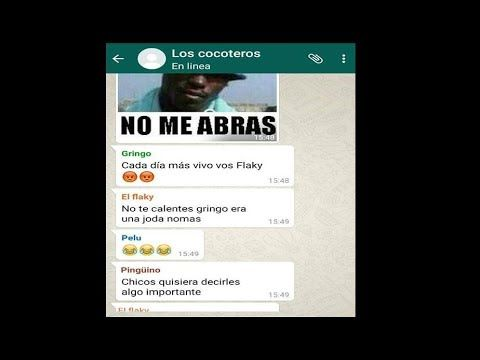 Recuperar chats WhatsApp