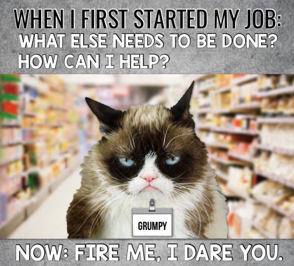 Grumpy Cat Work Grumpy Cat Humor Funny Grumpy Cat Memes Cat Work