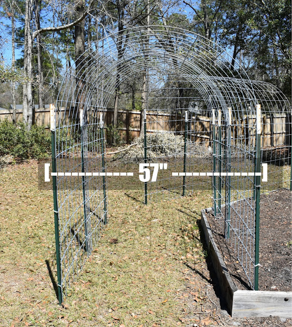 DIY: Cattle Panel Arbor Trellis ...seat installed to in the summer afternoon shade.Metal ArborsAll arbors look amazing when they are first built and installed. But as time and weather t...rsIf the upkeep of a wooden garden arbor or the heaviness of a metal garden arbor is not the arbor of choice consider the ultimate maintenance-free g #ideas.thelandscape.club #garden-arbor-trellis #landscape
