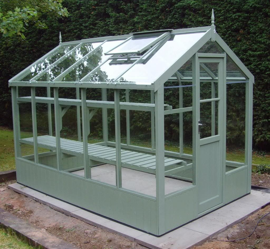swallow kingfisher in green | garden | Kast tuin, Tuin ...