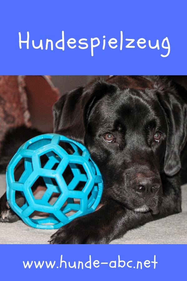 Hundespielzeug Die neuesten Hundeartikel hundespielzeug