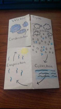 Water Cycle Fold Able Students Can Draw A Picture Of What It