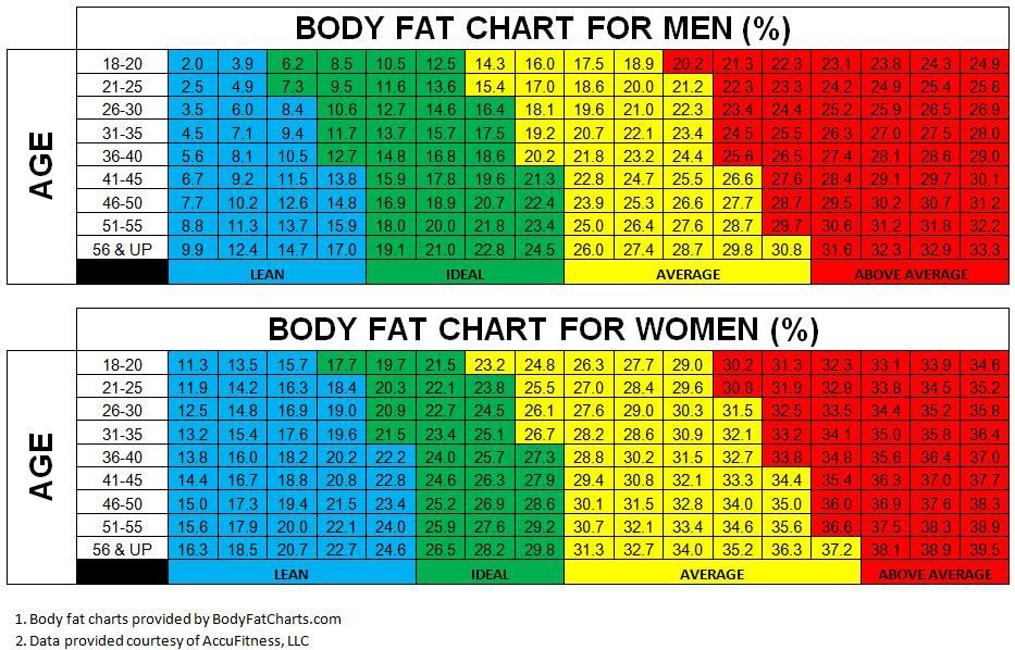 The Body Fat Charts Displayed Show Body Fat Percentages For