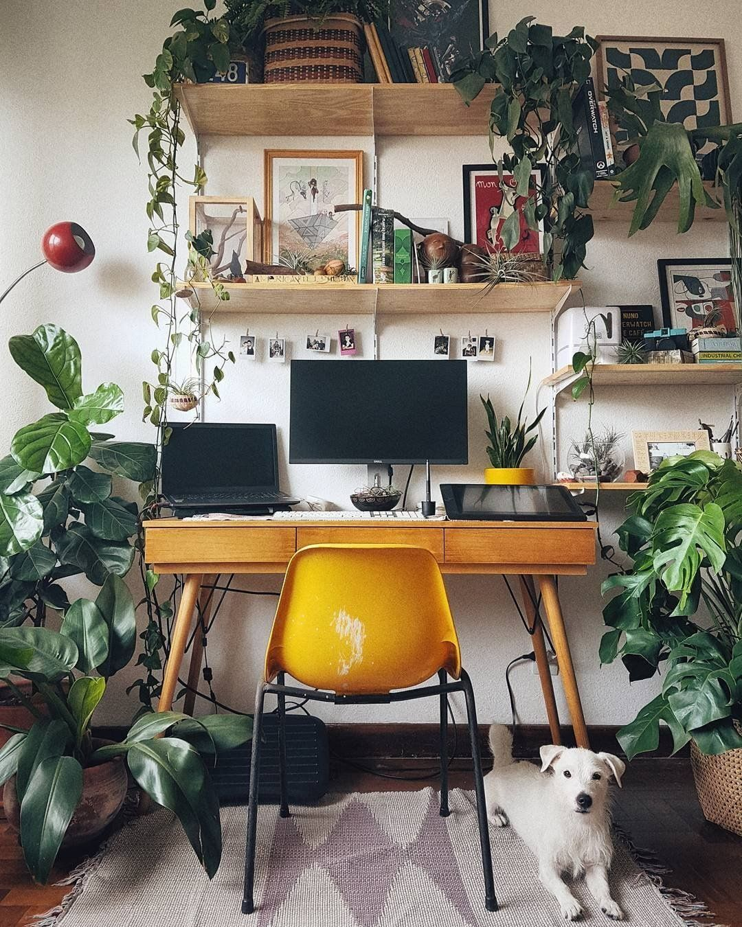 Rejuvenate Your Workspace With Plants And More Plants! Our