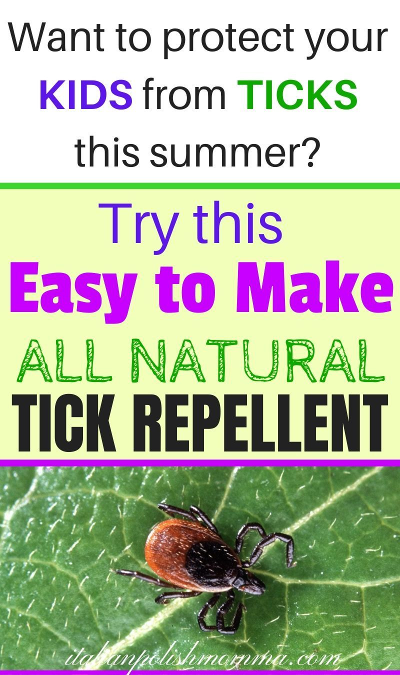 All natural easy to make tick repellent