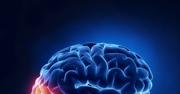 Pin On Neuroscience