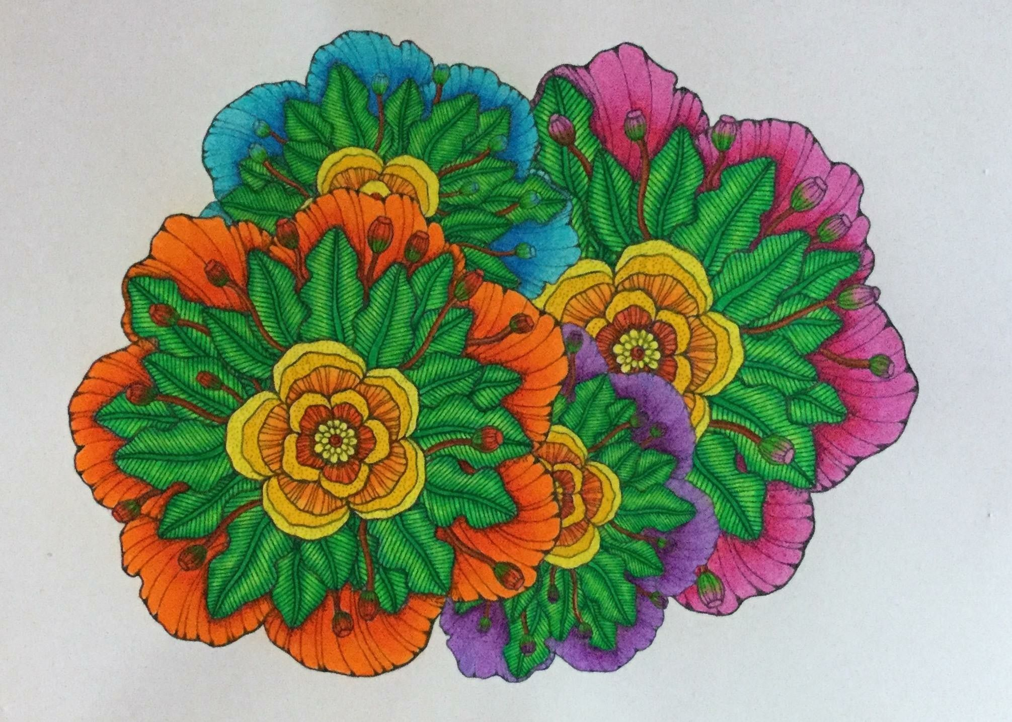 Coloring Pages Zinnia : Pin by marty woods on marty woods exclusive coloring pages pinterest