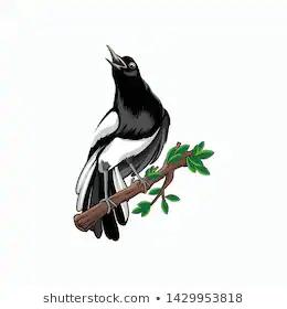 Kacer Logo Bird Illustration Vector Logo Royalty Free Stock Image In 2020 Bird Illustration Bird Illustration