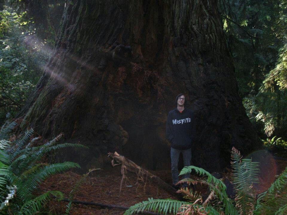 Alex in the Redwoods