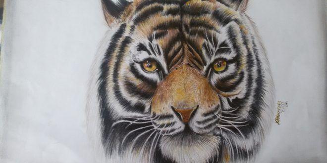 اليكس رسم نمر نرمين روبيل طفرة جوز Animal Tattoo Animals