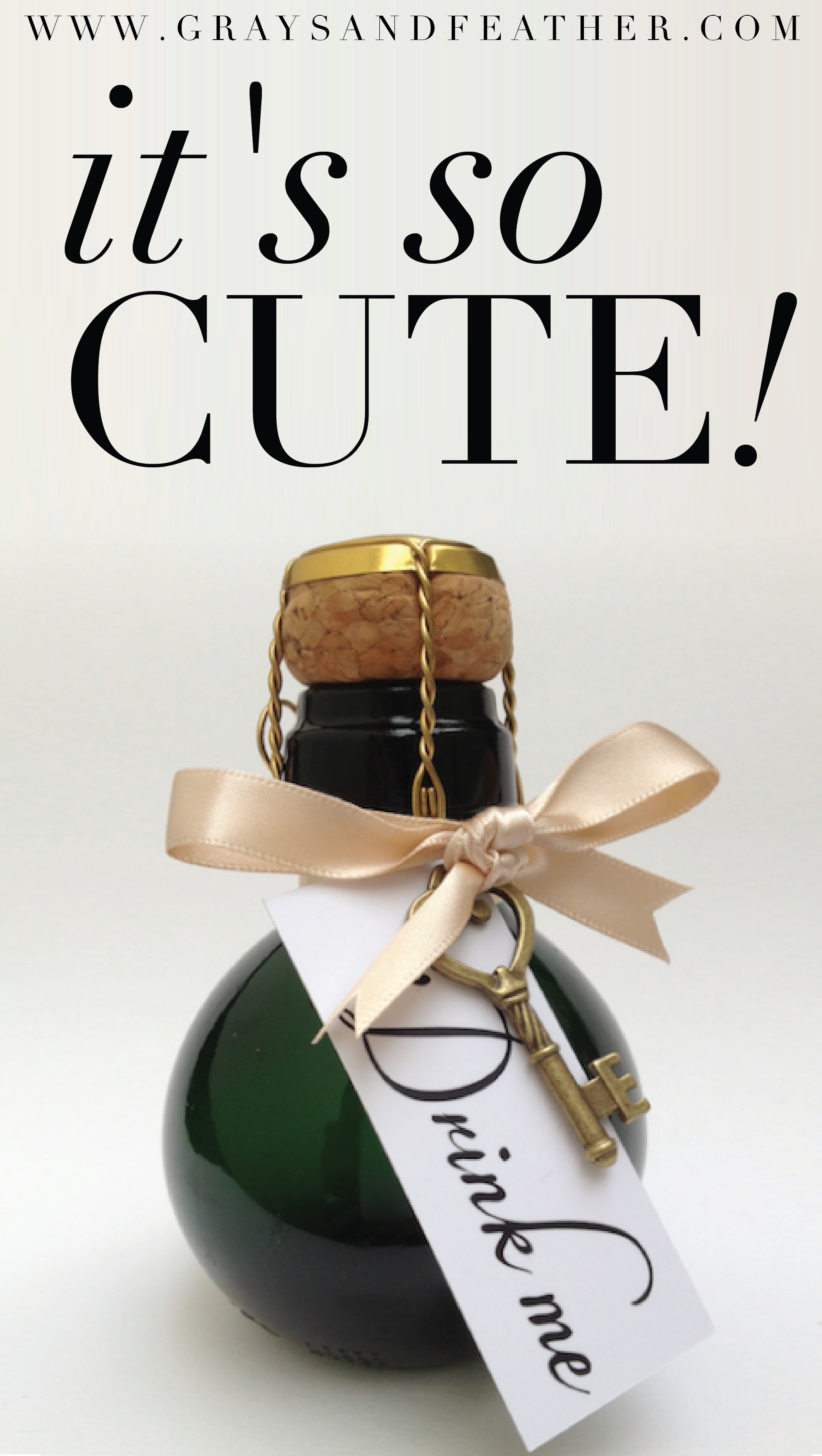 The world\'s smallest bottle of bubbly! The perfect gift for that ...