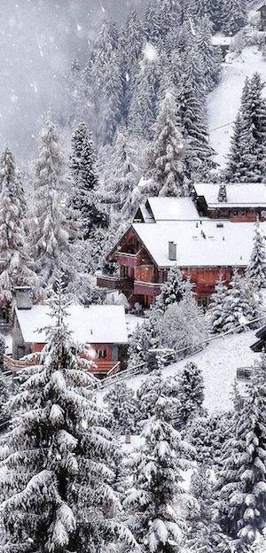 Photo of Creo que el invierno es la estación más hermosa de todas.