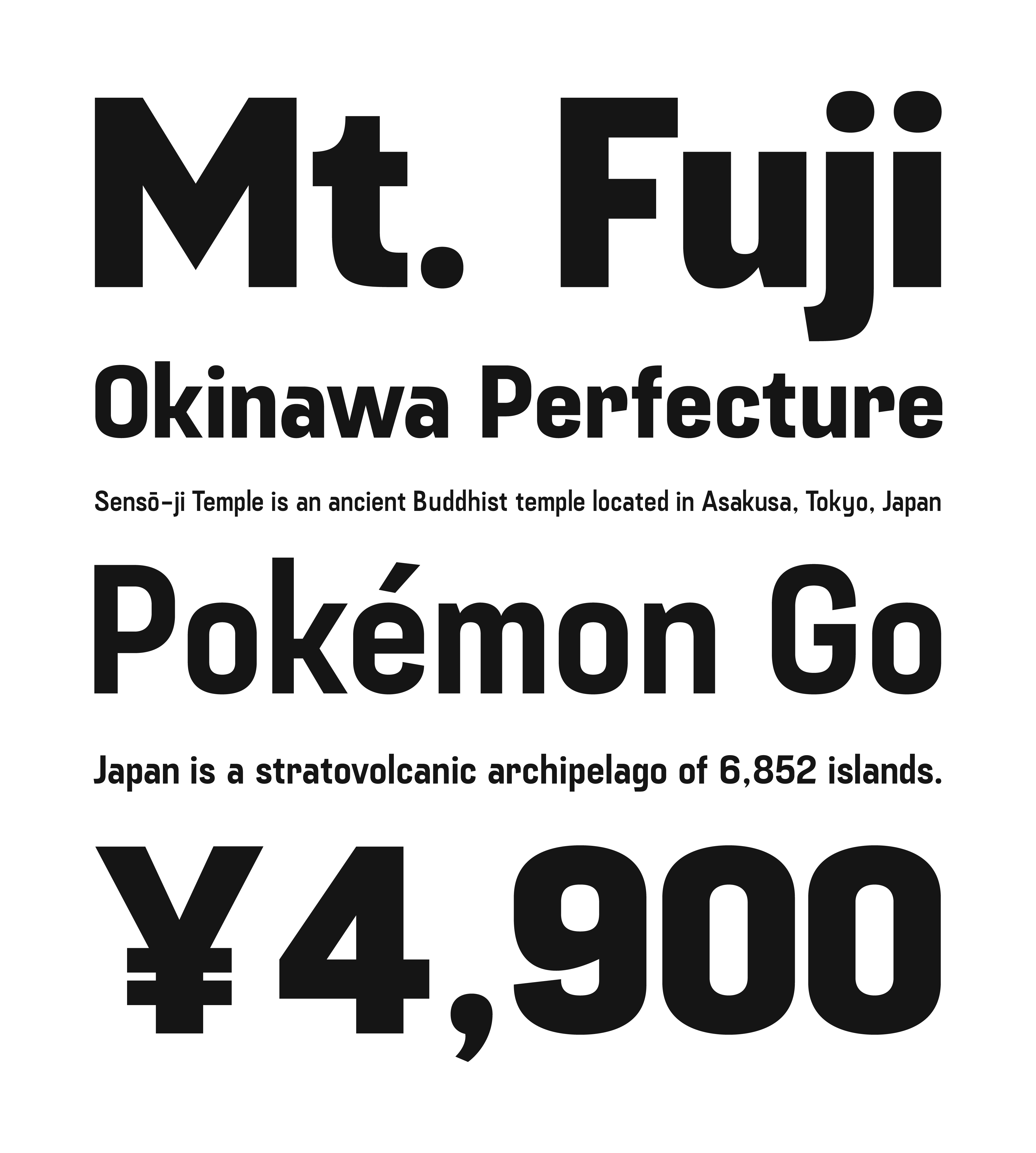 Fuji Sans Full Family (4 Styles) / Desktop / 1 Computer