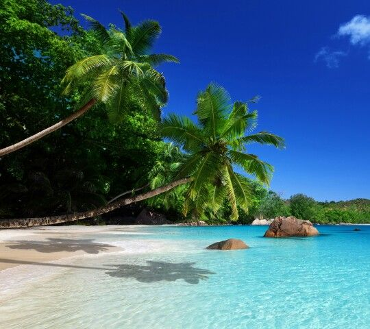 Seychelles Beach: Pin By Emilia Koleva On Sea