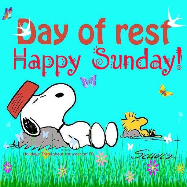 Sunday Funday Quotes: Snoopy, Peanuts Snoopy, Snoopy Quotes