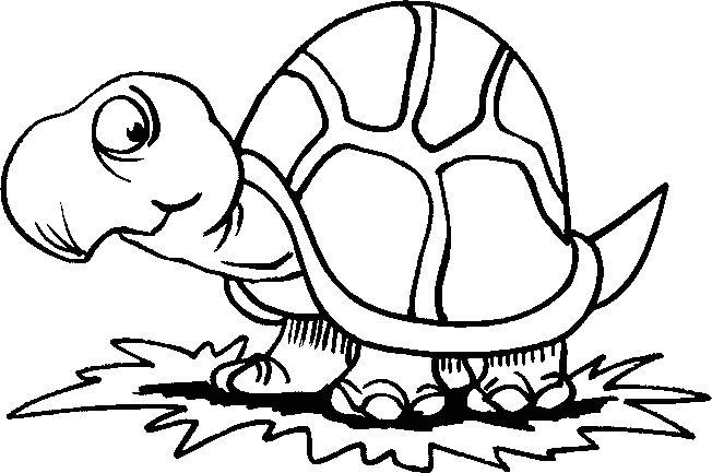 Coloring Pages Pond Animals : Dieren kleurplaten voor kinderen. kleurplaat en afdrukken tekenen nº