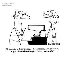 Branch Manager  Job Search Humor  Job Seeking Humor