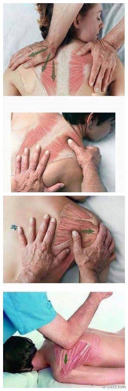 Mellkasi gerinc kenőcsének oszteokondrozis kezelése. Varikoosok ostechondrosis tünetei