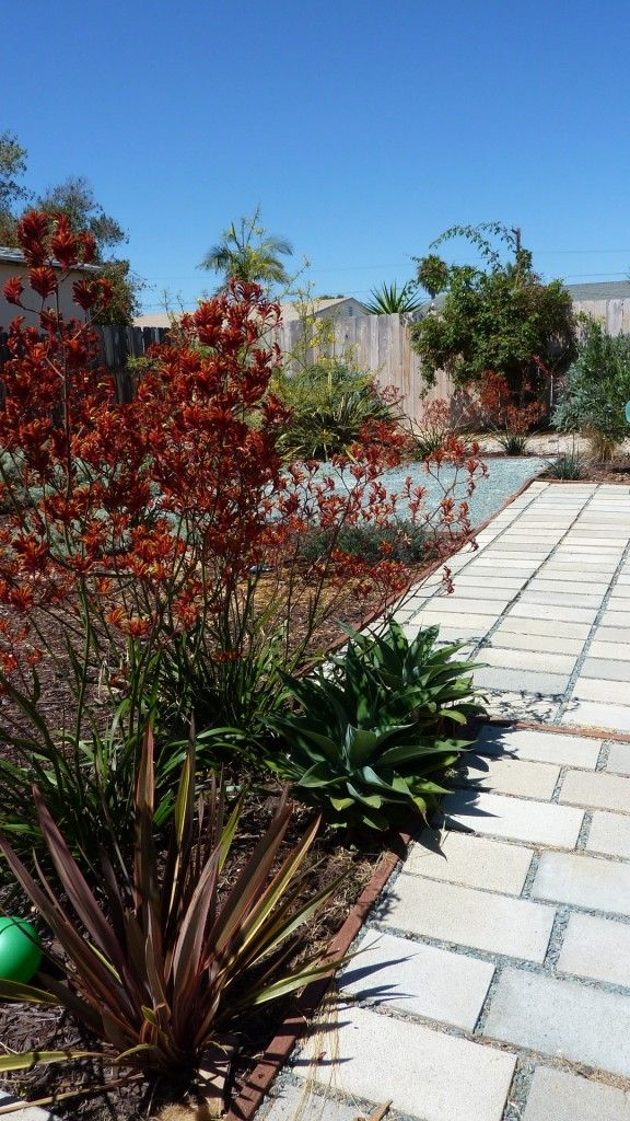 San Diego Garden Design