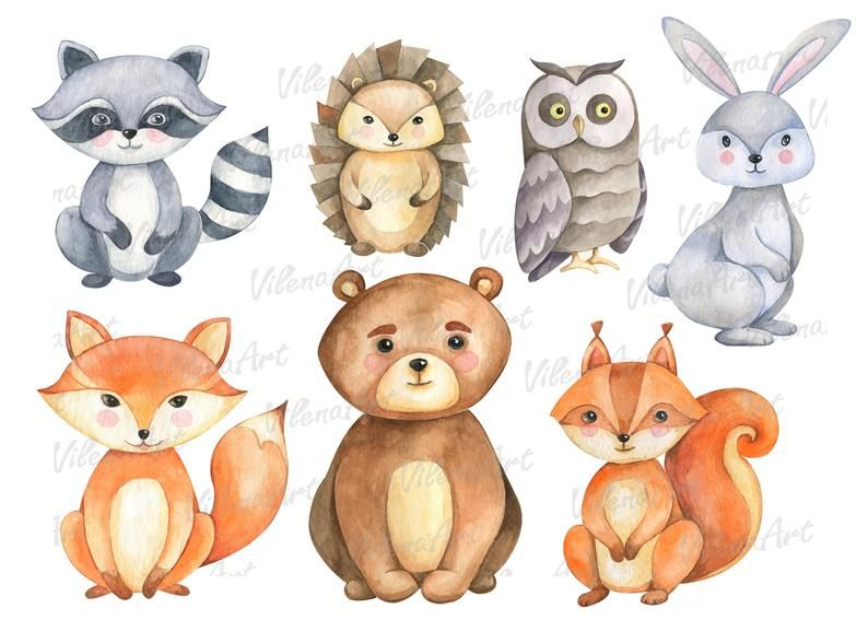 Forest Animals Clipart Woodland Clip Art Watercolor Png Etsy In 2021 Animal Clipart Forest Animals Animal Embroidery Designs