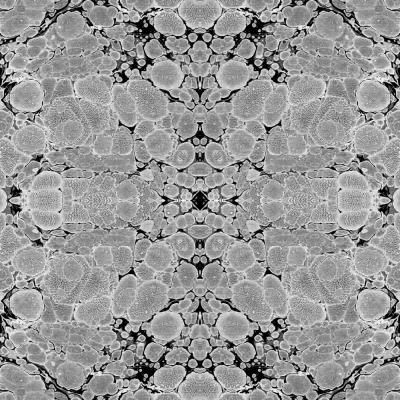 Mitchell Black Abra Collection Steel Kaleidoscope Removable And Repositionable Wallpaper Black White Wallpaper Classic Wallpaper Traditional Wallpaper