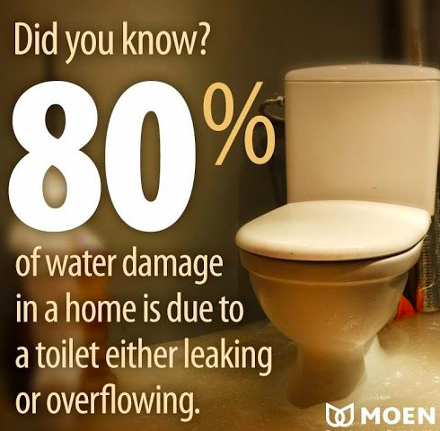 Did You Know 80 Of Water Damage Is Due To A Toilet Either Leaking Or Overflowing For Any Toilet Leak Or Clog There S Eve Leaking Toilet Water Damage Toilet