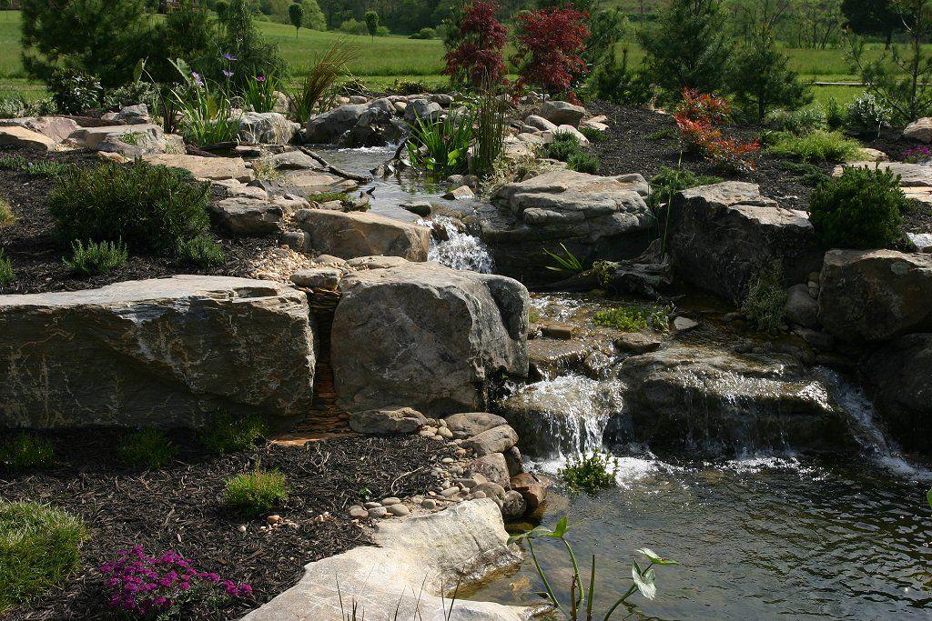 Captivating Beautiful Koi Ponds Photos | Ponds Waterfalls Pictures