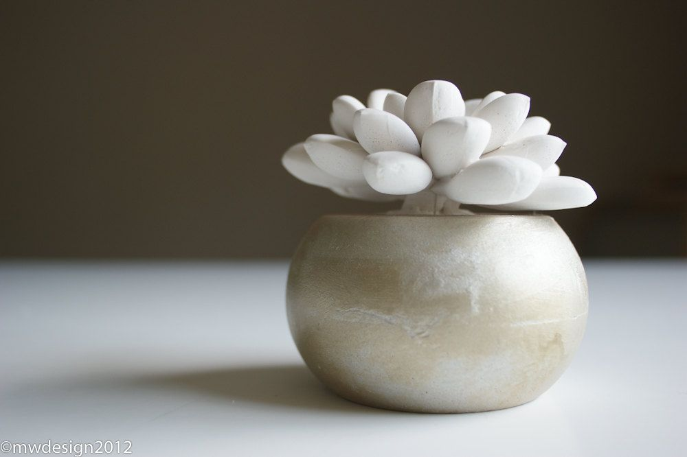 Modern White Succulent Sculpture in Round Champagne Container, Tabletop Centerpiece, Desktop Accessory, Home Decor. $17.00, via Etsy.