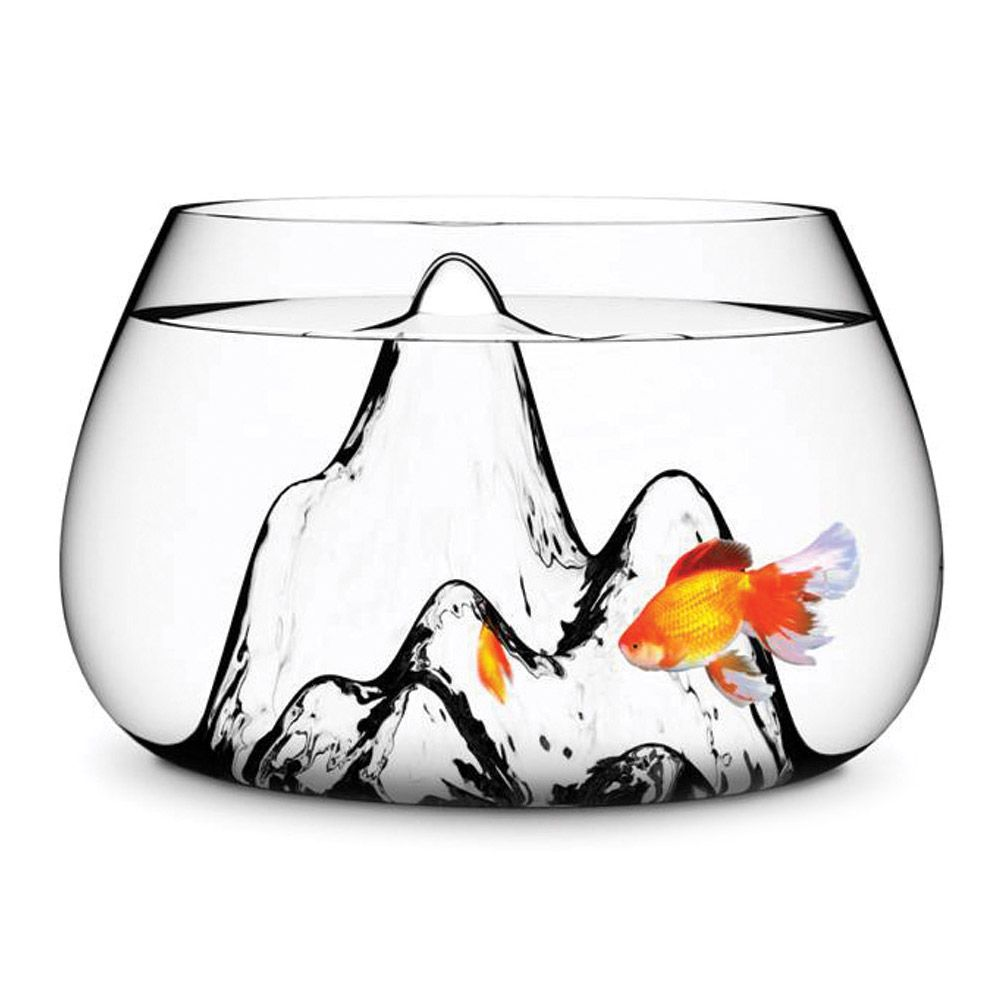 Omg fishbowlterrarium with mountains my inner nerd is excited
