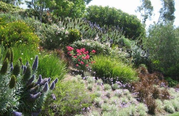 Garten am Hang anlegen und schöne Hangbeete bepflanzen Garten - gartenbepflanzung am hang