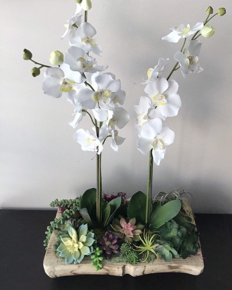 Excited To Share This Item From My Etsy Shop Rustic Orchid Planter Succulent And Orchid Arrange Orchid Flower Orchid Arrangements Orchid Flower Arrangements