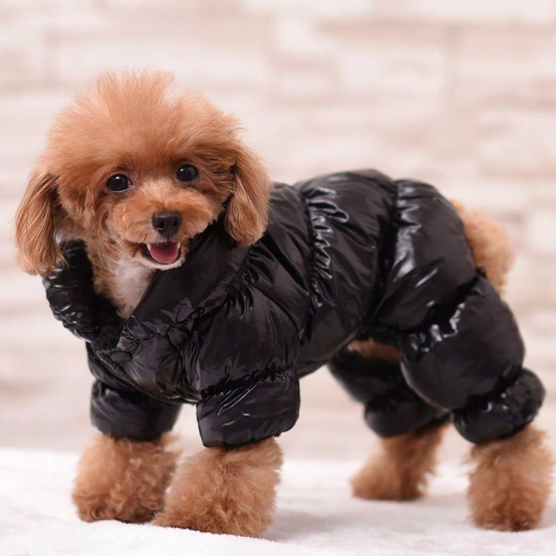 Shiny Puffer Jacket Designer Dog Clothes And Accessories Waterproof Dog Coats Dog Jackets Winter Warm Dog Coat