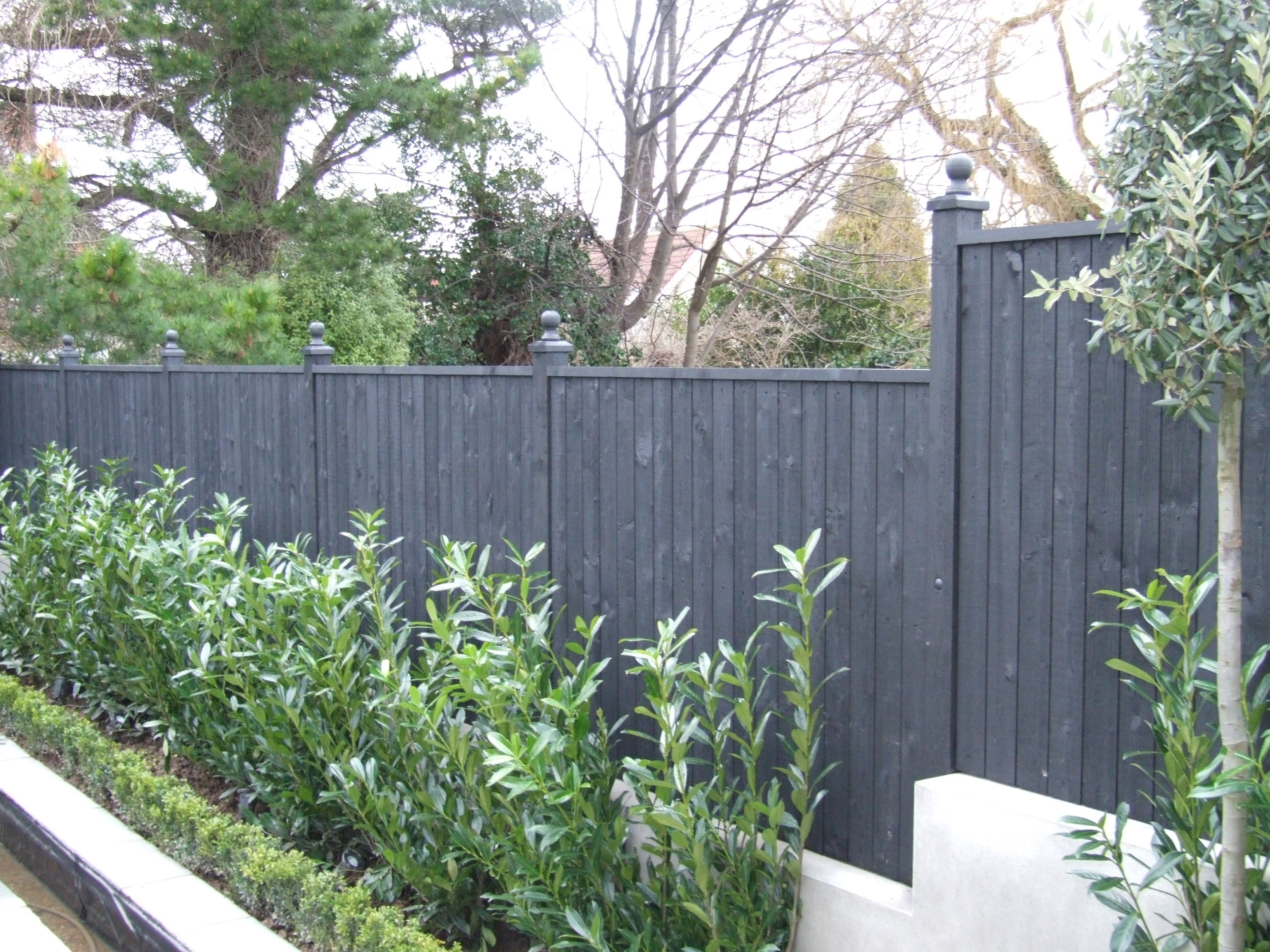 Painting Your Fencing Can Create A Beautiful Canvas To