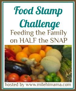 Food Stamp Challenge Feeding A Family On Budget