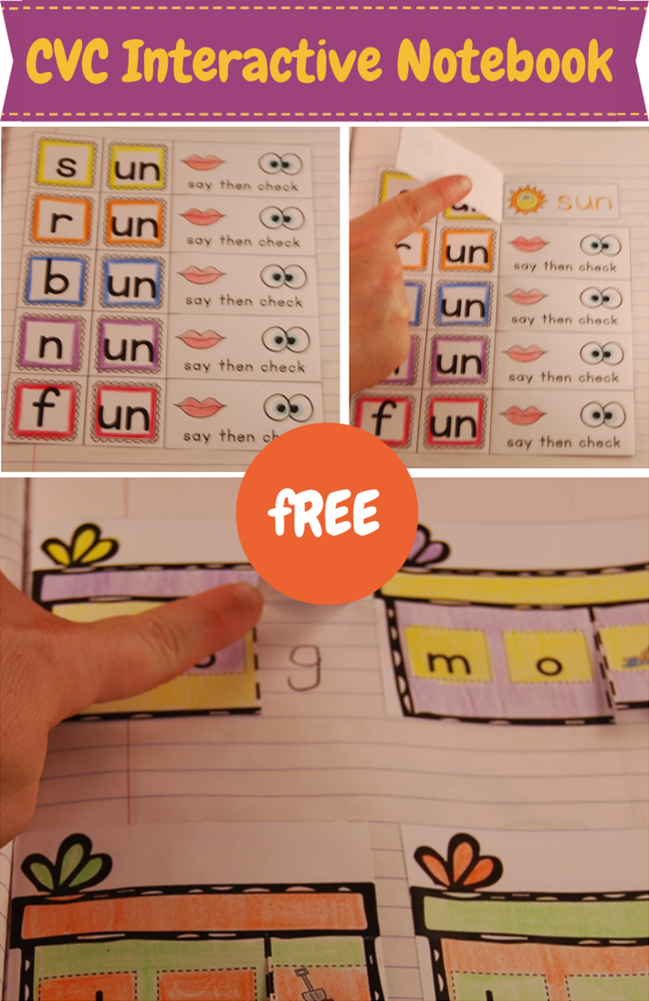 Kinder Garden: CVC Word Family Interactive Notebook Freebie
